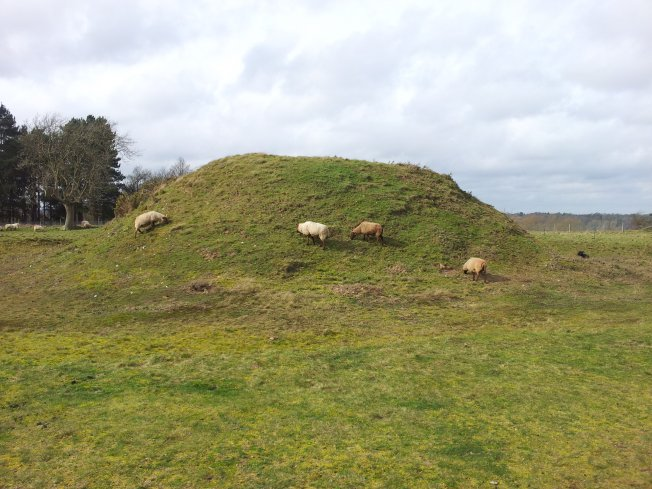 One of the Sutton Hoo mounds